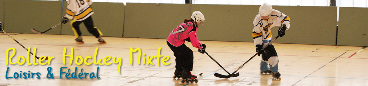 banniere hockey adultes mixte
